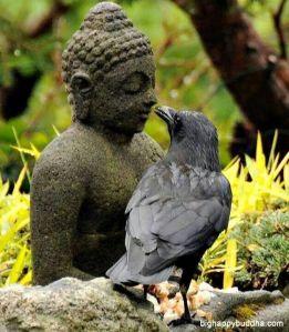 Buddha and bird