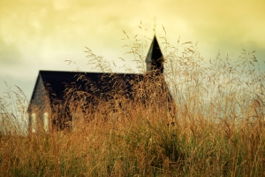 church in golden grass