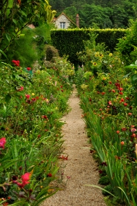 Path in Monet's garden